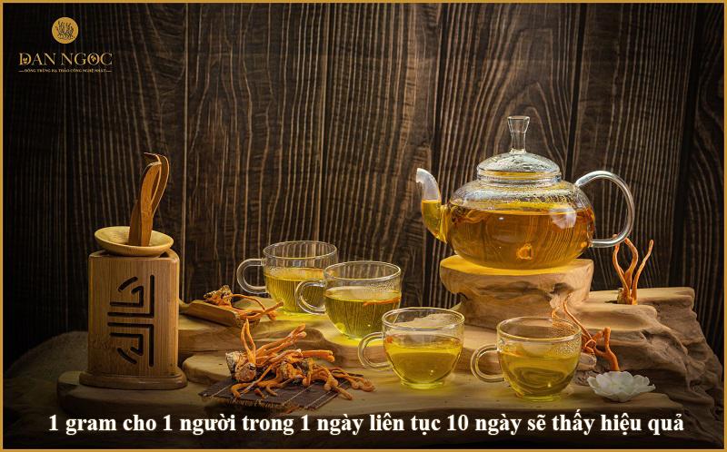 Trà đông Trùng hạ thảo Đan Ngọc